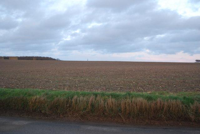 Fallow field in North Norfolk
