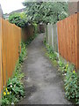 SE0636 : Footpath - Lees Close by Betty Longbottom