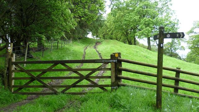 Part of Glyndwr's Way