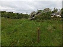 SX6397 : Trehill Farm by David Smith