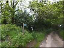 SX6397 : Devonshire Heartland Way crossing a minor road by David Smith