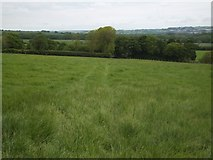 SX6497 : Footpath north to Halford by David Smith