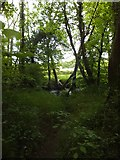 SX6597 : Footpath to the River Taw, Taw Green by David Smith