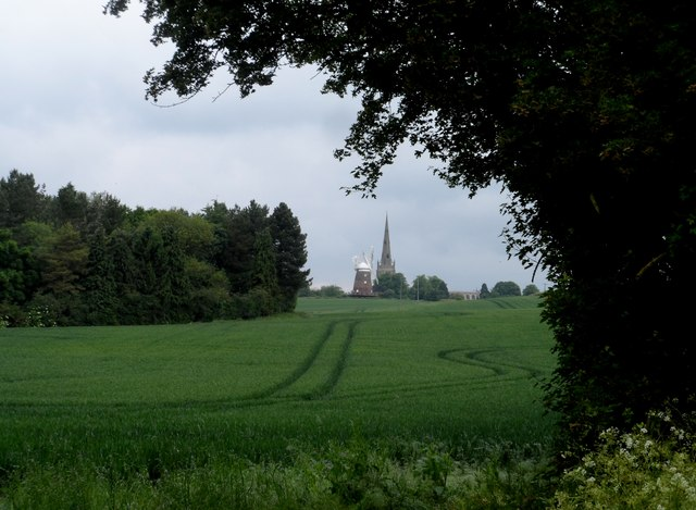 Thaxted windmill seen through wheat field