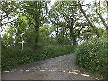 SX6697 : Wyke Moor Cross by David Smith