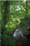 TL7638 : River Colne by Glyn Baker