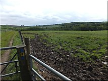 SX6698 : Fields and woods around Cocktree Throat by David Smith