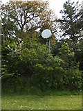 SX6598 : Microwave communications mast at North Wyke by David Smith
