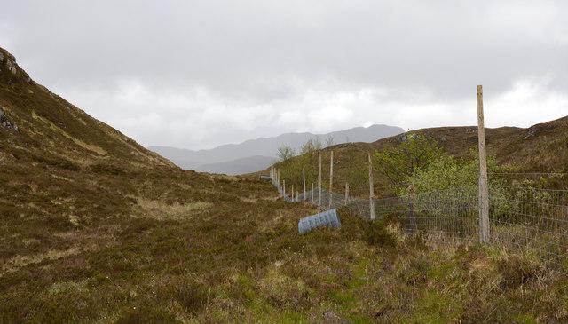Deer fence passing between two knolls