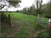 SS6501 : Tarka Trail on The Hams at North Tawton by David Smith