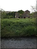SS6501 : Derelict building by River Taw, North Tawton by David Smith
