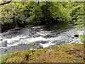 NY3603 : River Brathay, Rapids at Clappersgate by David Dixon