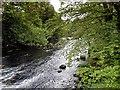 NY3603 : River Brathay by David Dixon