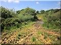 SS4702 : Path on Odham Moor by Derek Harper