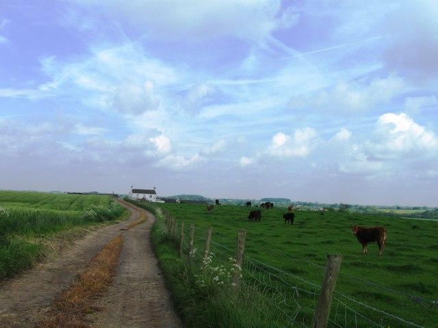 Elstob Hill Farm