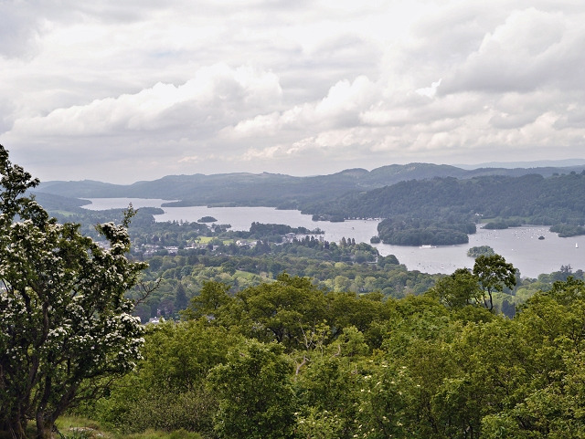South Windermere from Orrest Head