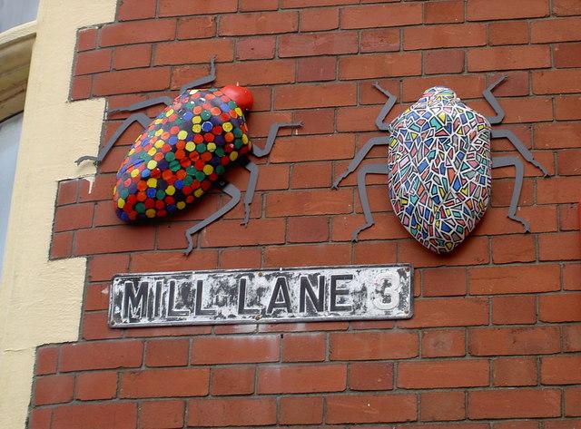 Mill Lane bugs