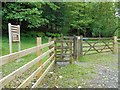SD3787 : Gate to Great Knott Wood by David Dixon