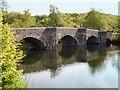 SD3686 : Newby Bridge, River Leven by David Dixon