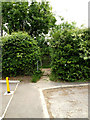 TM3863 : Footpath off Park Avenue by Geographer