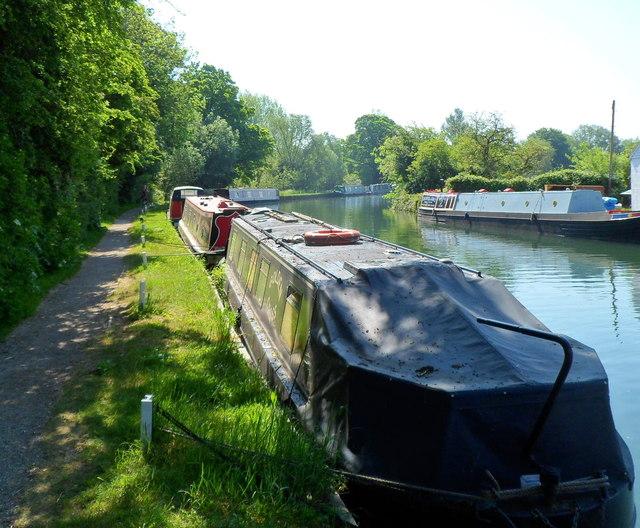 Moored narrowboats SE of Saul Junction