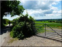 SU6022 : Farm gate by South Downs Way by Shazz