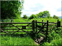 SU6022 : Gated footpath on Beacon Hill by Shazz