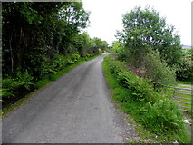 G9728 : Road at Ross by Kenneth  Allen