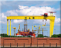 J3575 : The most famous cranes in Belfast by Rossographer