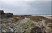 G6351 : Streedagh Point by Anne Burgess