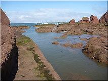 NT6779 : Coastal East Lothian : On The Shelf by Richard West
