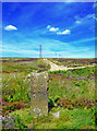 NZ8602 : Sneaton Boundary Stone - Wider View by Scott Robinson