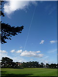 SZ1192 : King's Park: a big stripe above the cricket pitch by Chris Downer