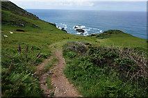 SX7636 : Coast path by jeff collins