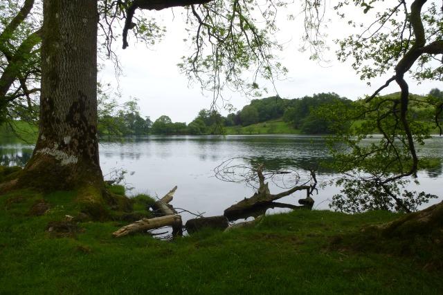 Across Loughrigg Tarn
