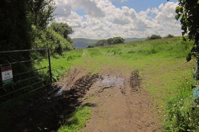 Field entrance near Elsford