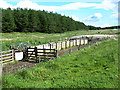 NT2143 : Livestock pens  in the Meldons by Oliver Dixon