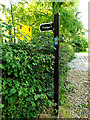 TM3780 : Footpath sign at St. Peter's Church by Adrian Cable