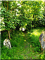 TM3780 : Footpath to Wash Lane by Geographer