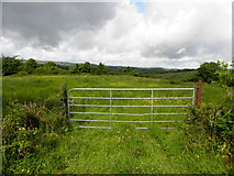 G9226 : Gate, Corcormick by Kenneth  Allen