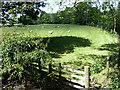 NY5118 : Field near Bampton by Oliver Dixon