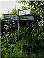 TM4280 : Roadsign on Church Hill by Adrian Cable