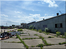 TR2955 : Derelict brickworks by Robin Webster