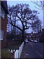 TQ2089 : Roe Lane, Kingsbury by David Howard
