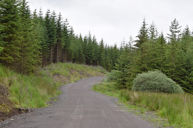 West Loch Awe Timber Haul Route in Inverinan Forest