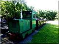 H8960 : Miniature train, Peatlands Park by Kenneth  Allen