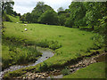 NY5918 : Spring beside Sleagill Beck by Karl and Ali