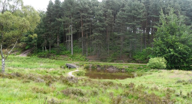 Pond on the course of Sher Brook