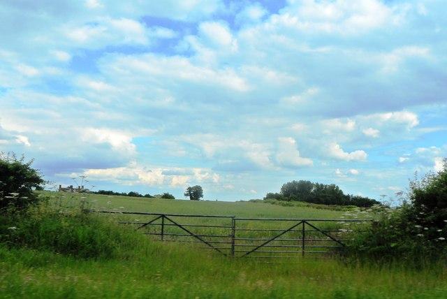 Farmland at The Warren
