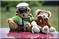 SJ5451 : Police teddy and friend at Cholmondeley by Jeff Buck